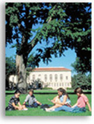 students sitting on grass on campus